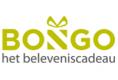 Bongo NL acties